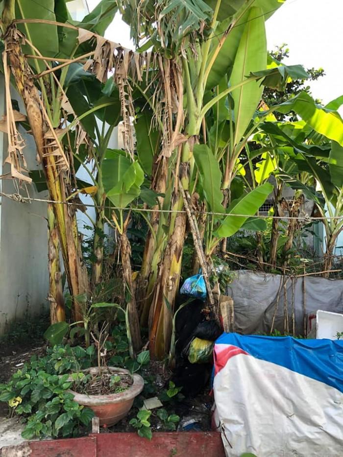 Bán Nền 72m2 Khu Dân Cư 3a P. An Bình Q, Ninh Kiều Cần Thơ