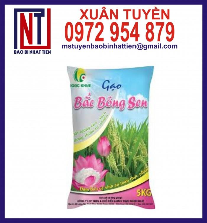 Bao bì gạo ghép màng phức hợp 1kg, 2kg, 5kg24