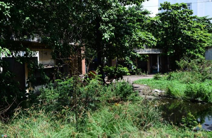 Kiệt Ô Tô Nguyễn Trãi