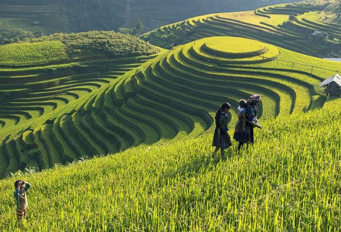 Hà Nội - Hạ Long - Ninh Bình - Sapa