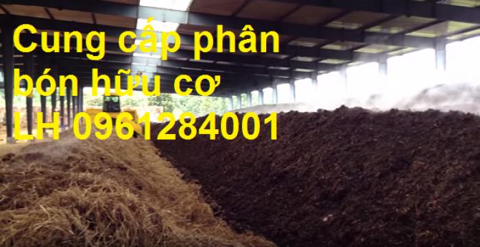 Chuyên cung cấp phân hữu cơ, phân chuồng ủ hoai, phân gia súc ủ hoai, uy tín, chất lượng, giao hàng toàn quốc5