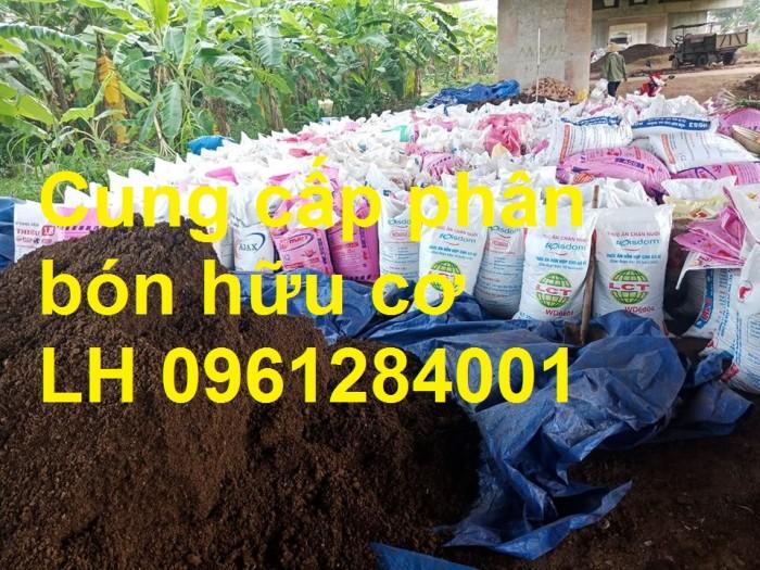 Chuyên cung cấp phân hữu cơ, phân chuồng ủ hoai, phân gia súc ủ hoai, uy tín, chất lượng, giao hàng toàn quốc1