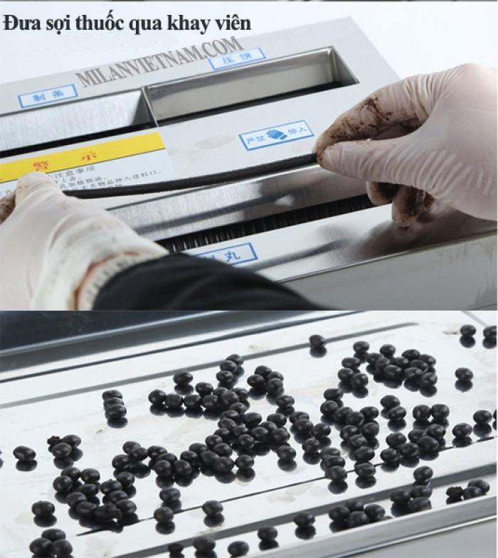 Máy làm viên hoàn mềm DZ 20, máy vo tròn viên thuốc đông y giá rẻ0