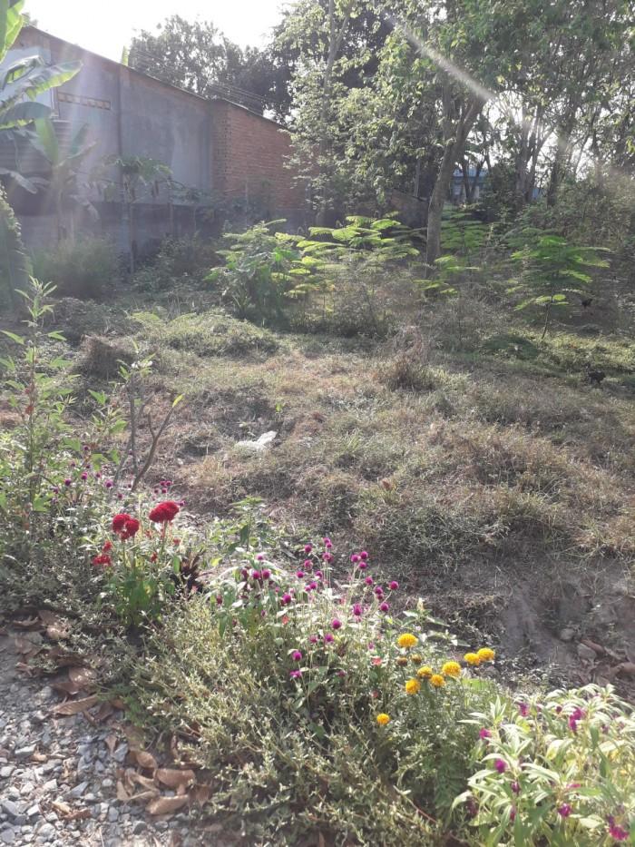 Đất Nở Hậu 18m X 50m Đường Nhựa Xã Phước Vĩnh An Huyện Củ Chi