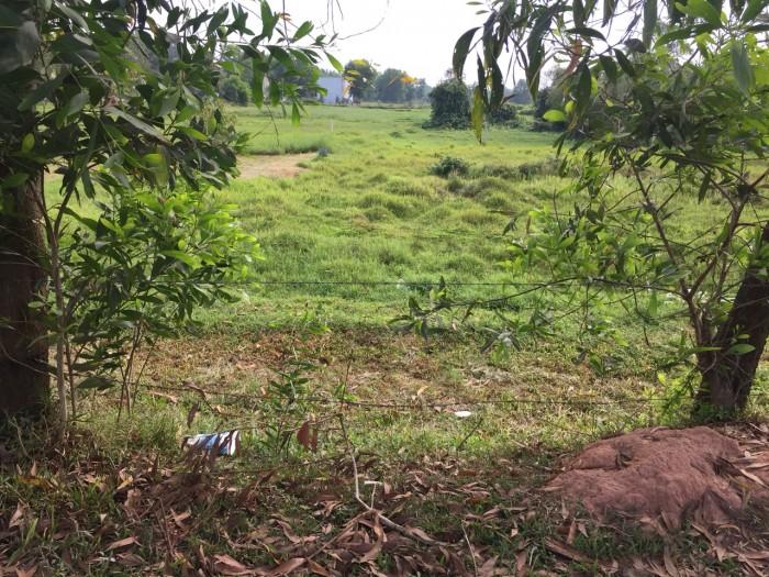 Kẹt vốn bán gấp 2 lô đất gần khu nông nghiệp công nghệ cao, gần thị trấn Củ Chi