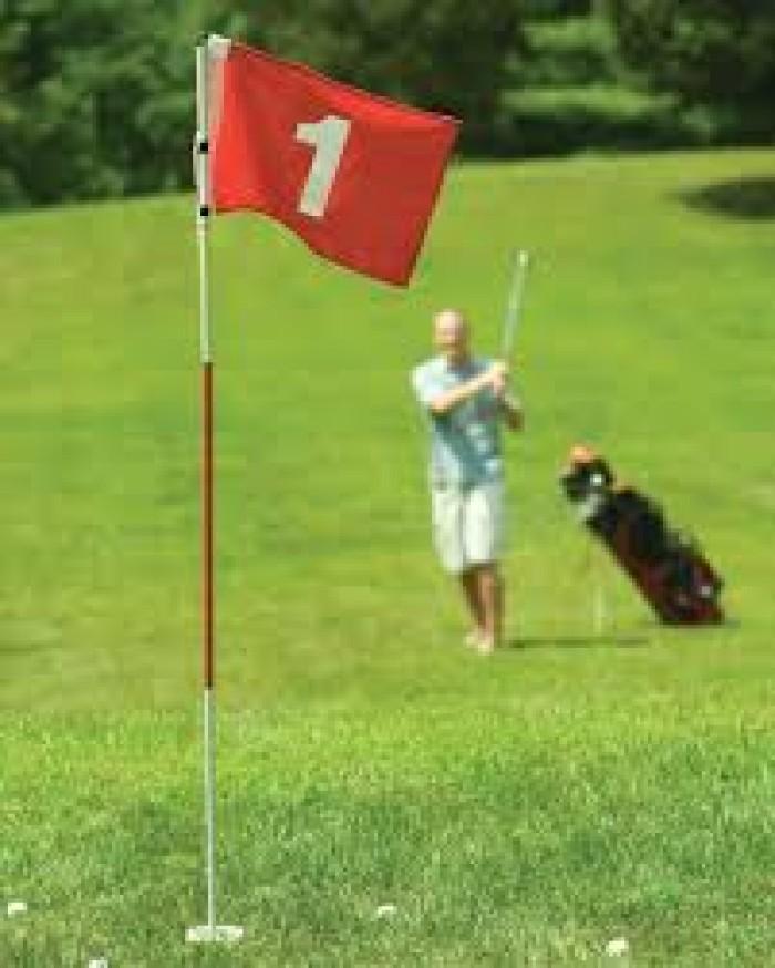 Bộ cờ golf2
