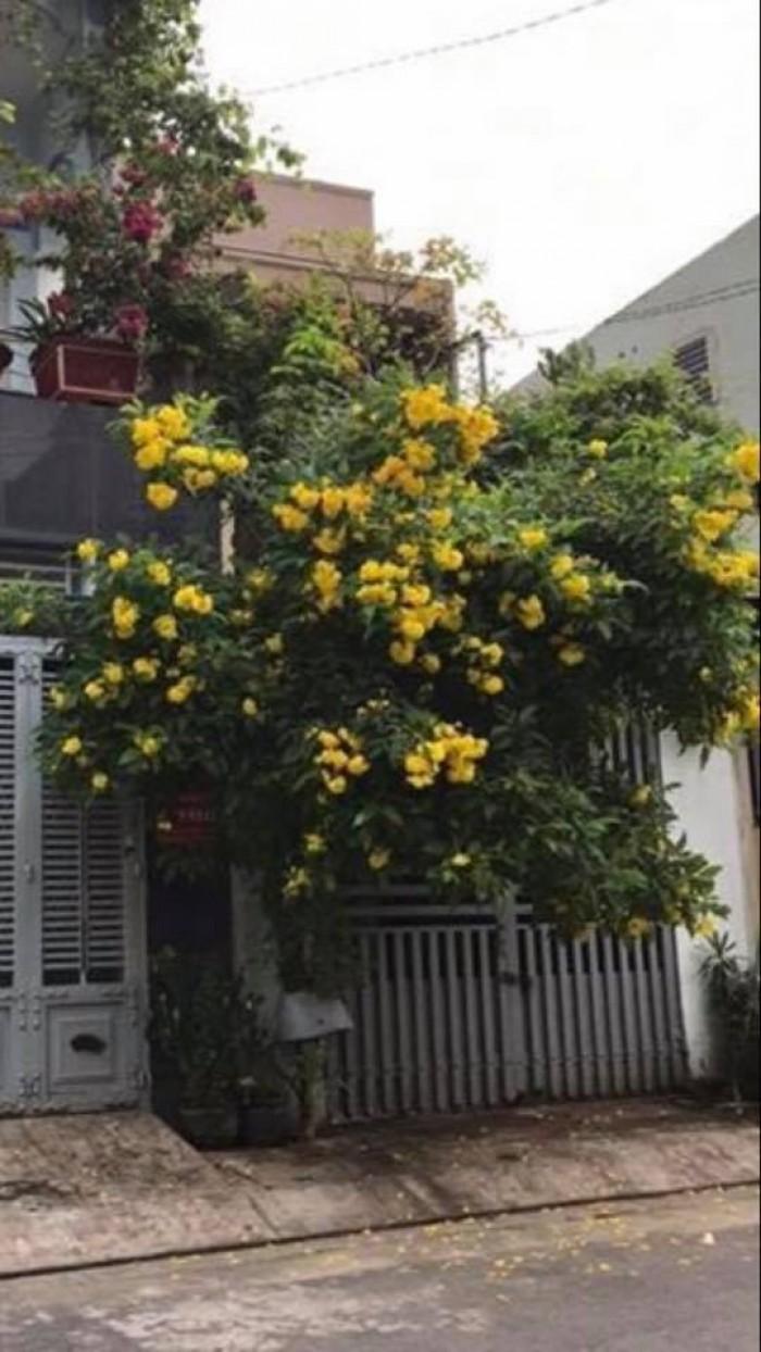 Bán nhà 5m ,1 gác Hẻm 10m Phan Anh, P.Hiệp Tân , Q.Tân Phú