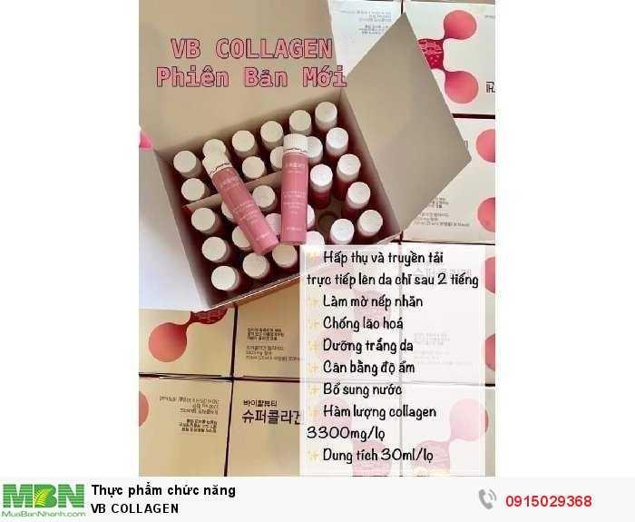Vb Collagen0