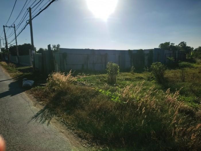 Bán đất 241m2 ( ngang 7m)- mặt tiền đường T12, Tấn Quý Tây, Bình Chánh