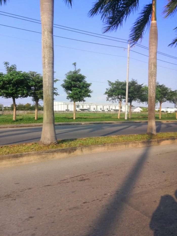 Vỡ nợ bán gấp lô đất DT 400m2, Quốc lộ 50, Bình Chánh.