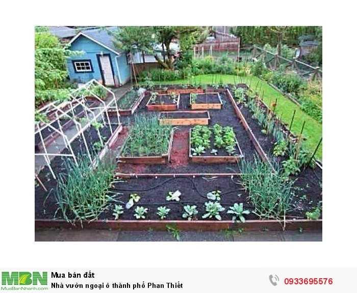 Nhà vườn ngoại ô thành phố Phan Thiết