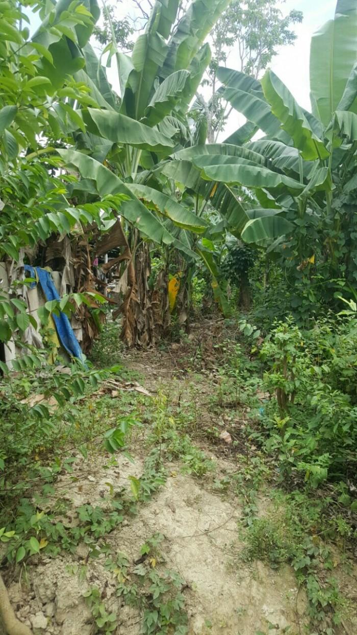 Ban đất tại Hương An giá rẻ 150m2. Huế