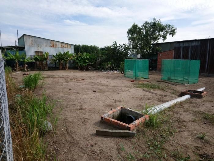 Cần Bán 91m2 Đất Thổ Cư xã Hưng Long Huyện Bình Chánh