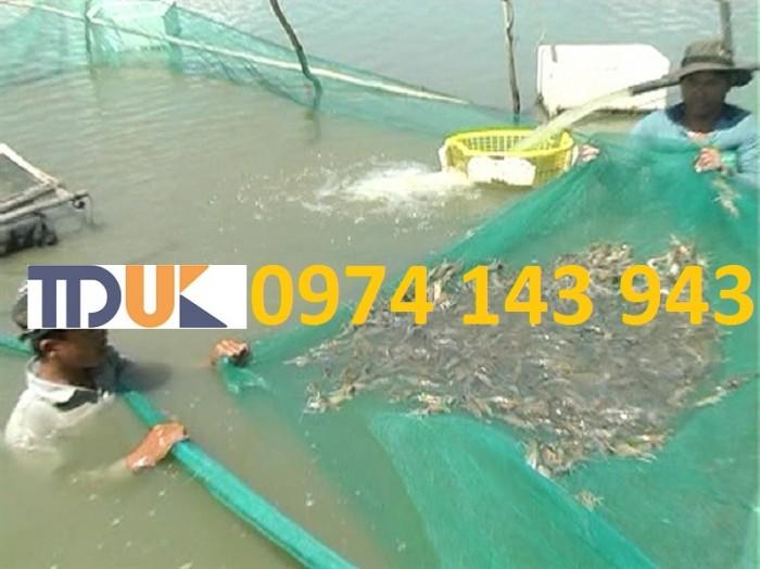 Đại lý phân phối lưới nuôi trồng thủy sản uy tín giá rẻ nhất tại HCM3