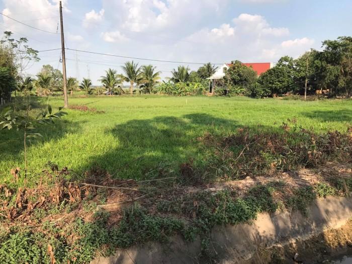 Bán đất đường trương Thị Kiện, xã Thái Mỹ, Củ Chi diện tích 5925 mét vuông