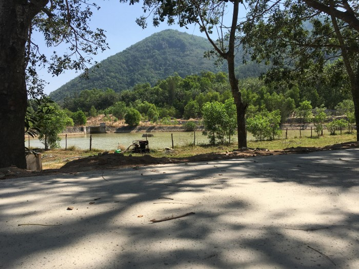Bán gấp 03 mảnh vườn cây ăn trái tại Phú Mỹ, BRVT