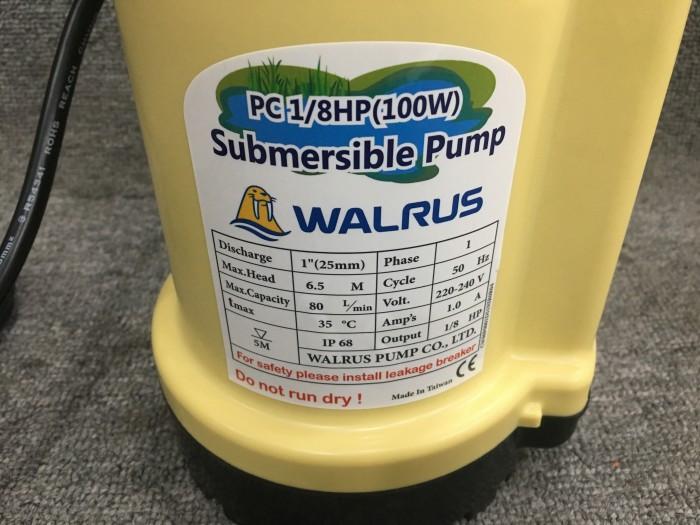 Máy bơm chìm Walrus PC 250A (Mã cũ PW 250A) - 1,5inch3