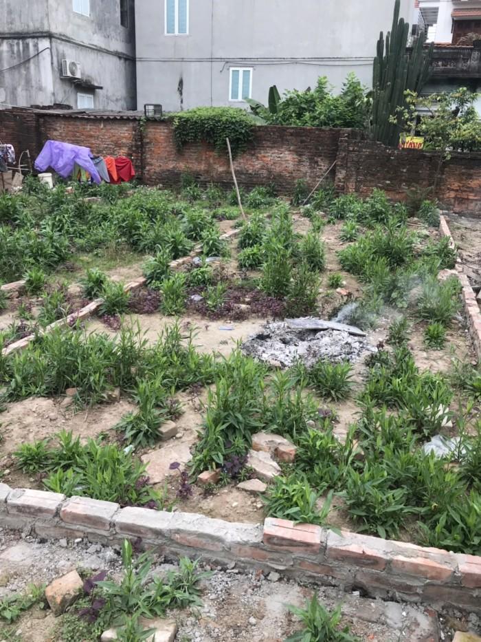 Bán nhanh mảnh đất 36m2 ở Lai Xá, Kim Chung, Hoài Đức.