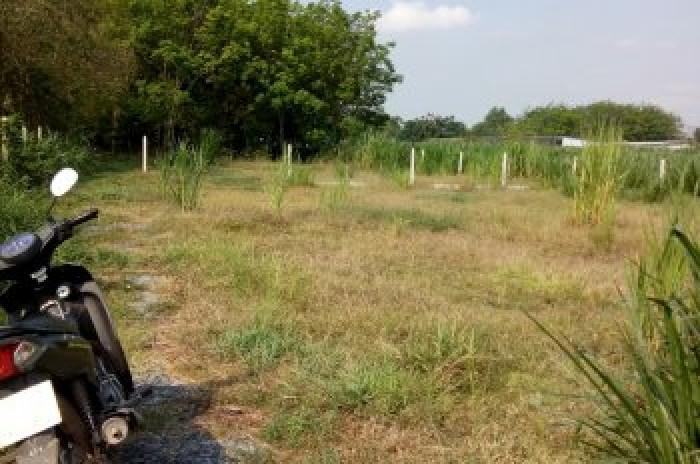 Bán đất thổ cư xã Tân Phú Trung, huyện Củ Chi