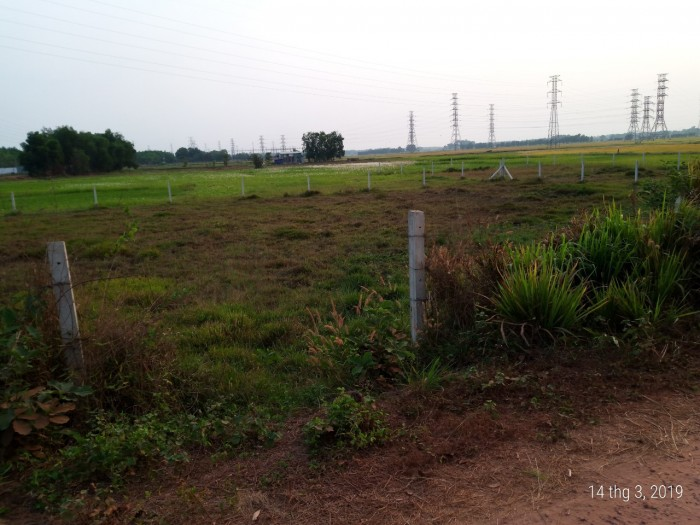 Đất Nền 37m X 30m Đường Đất Ấp Ngã Tư Thuộc Xã Nhuận Đức,Củ Chi