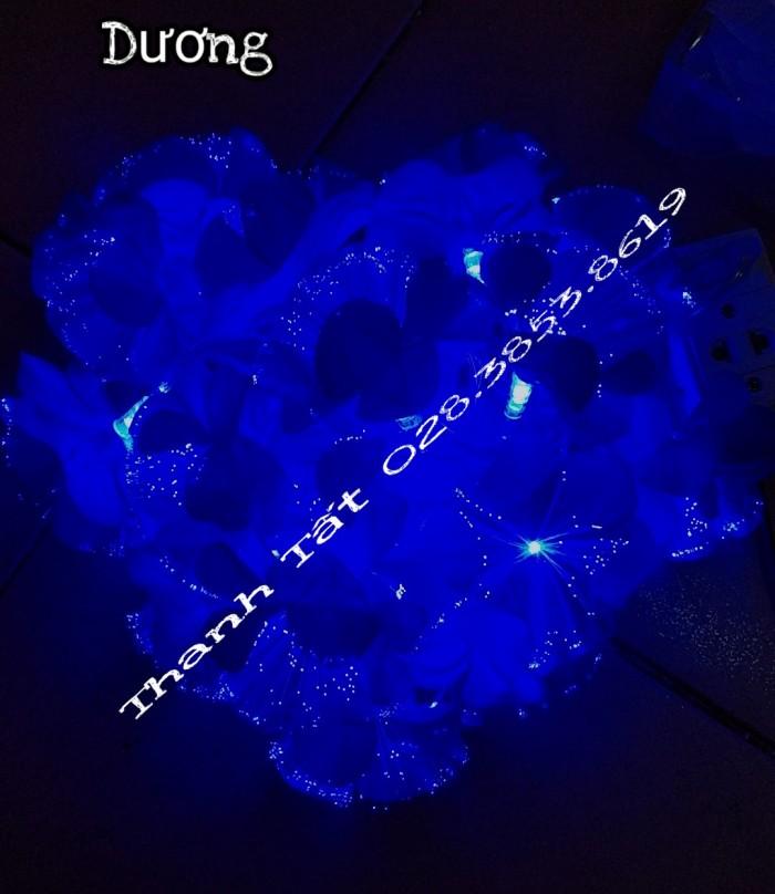 Hoa cước led phát sáng10