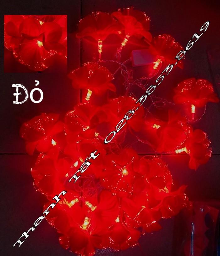 Hoa cước led phát sáng8