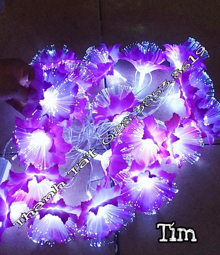 Hoa cước led phát sáng1