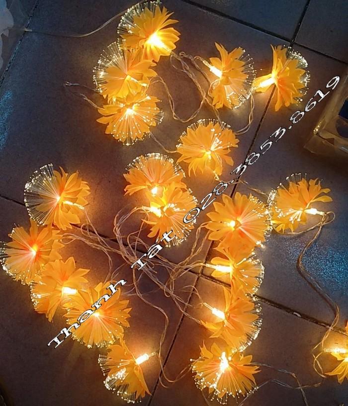 Hoa cước led phát sáng2