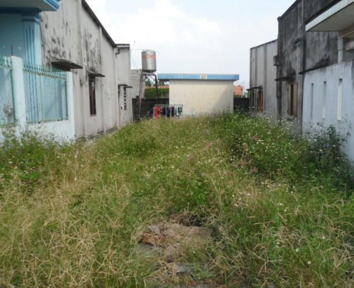 BÁN 109.3m2 (ngang 8.3m) đất thổ cư, Đường Đoàn Nguyễn Tuân, Bình Chánh.