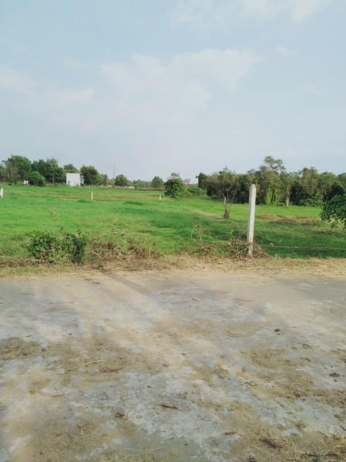 Bán đất vườn huyện Củ Chi, mặt tiền đường nhựa