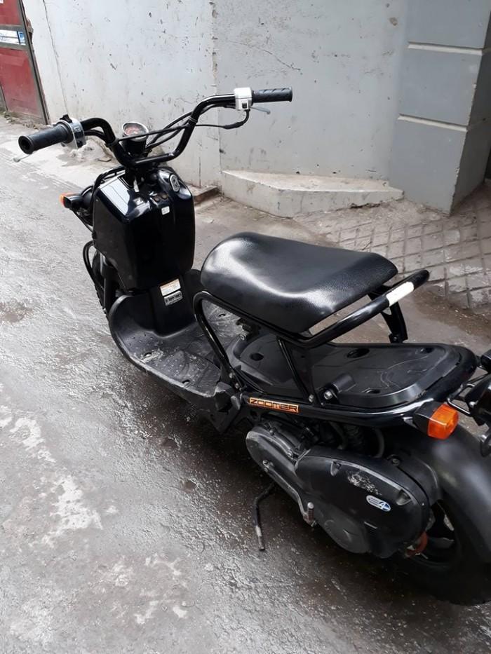 Xe máy dung tích nhỏ Honda Zoomer