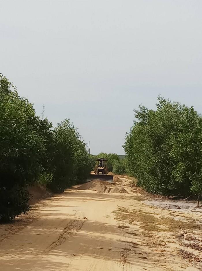 Bán Đất Ven Biển Bình Thuận Giá Rẻ Đầu Tư 1000m2.