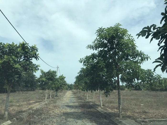 BÁn 1 mẫu đất ONT tại Bàu Cạn, Long Thành