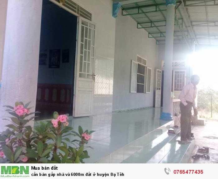 Cần bán gấp nhà và 6000m đất ở huyện Đạ Tẻh