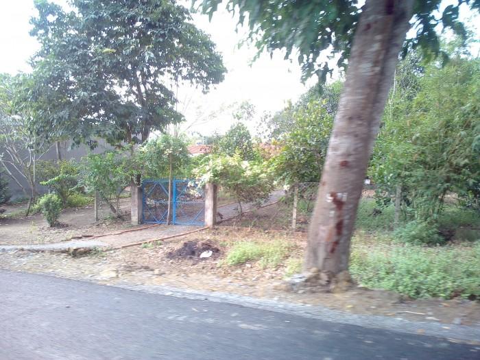 bán đất diện tích 458m2 ( ngang 12m) đường quốc lộ 50, Bình Chánh.