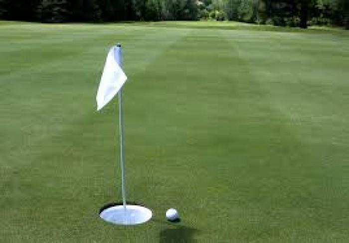 Bộ lỗ golf, cột cờ, lá cờ golf vải mới 100%2