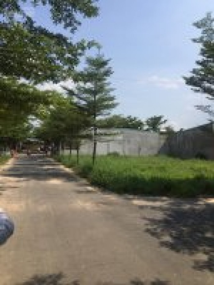 Đất Phước Tân - Biên Hòa - Gần chợ Tân mai 2 Sổ Riêng thổ Cư 100%