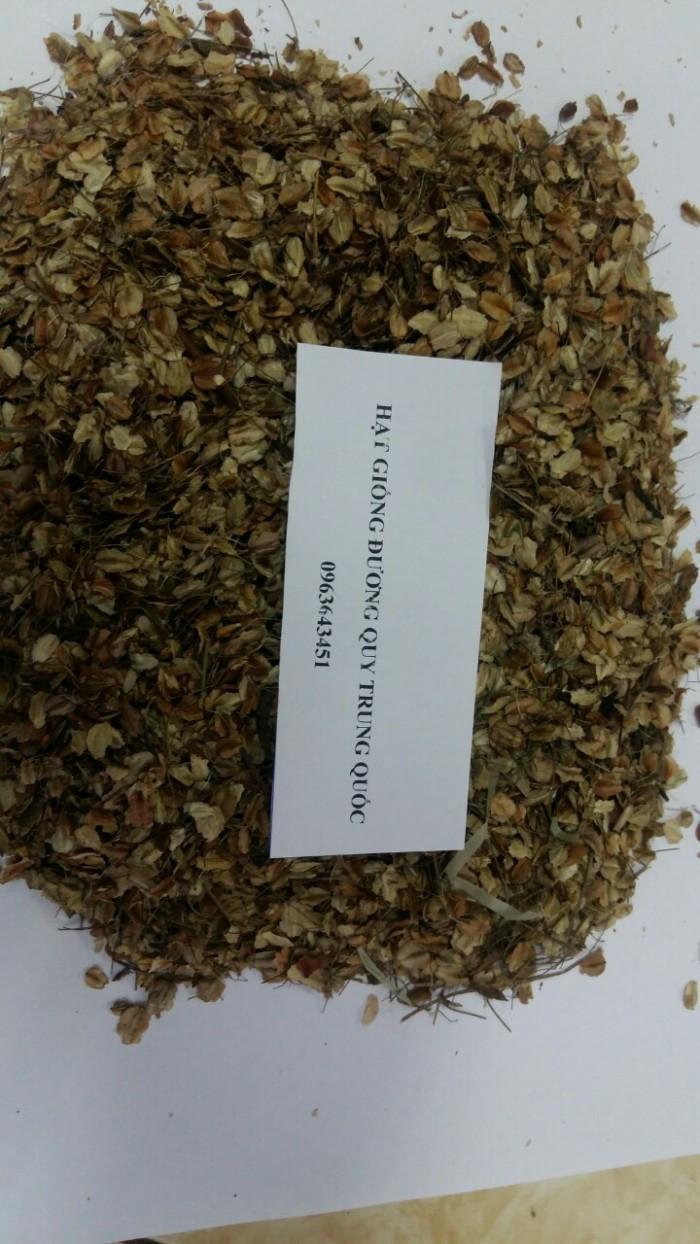 Cung cấp cây giống, hạt giống sâm dược liệu sâm bố chính, sâm đương quy, sâm ngọc linh chuẩn, uy tín8