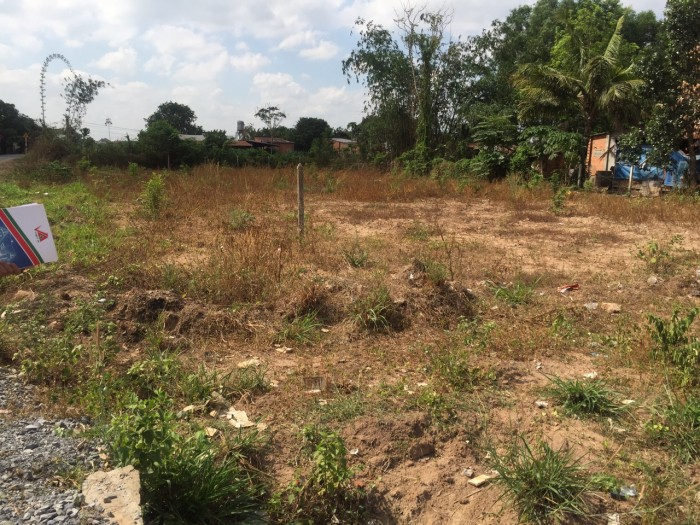 Gia đình cần bạn gấp vài lô đất thổ cư tại Củ Chi QL22 MT tỉnh lộ 8