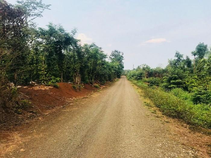 Bán đất mặt tiền Nguyễn Tri Phương, chưa qua Vành Đai, 15x68m