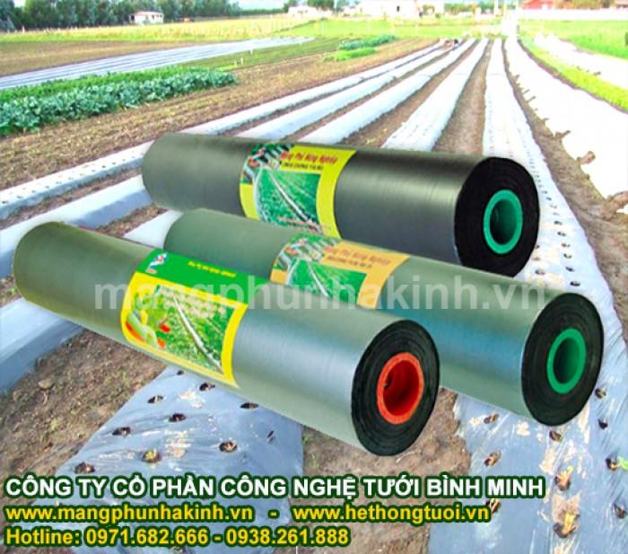 Đại lý màng phủ nông nghiệp từ công ty sản xuất màng phủ