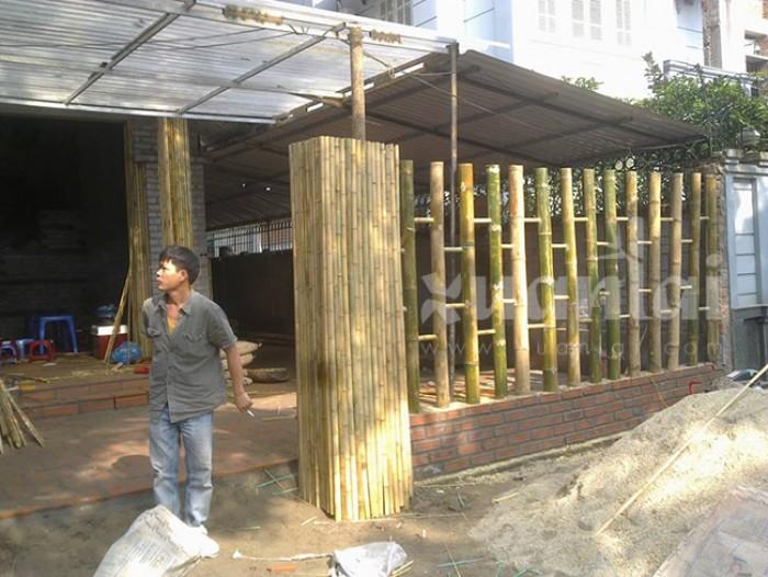 thi công hàng rào tre trúc - Thân Thiện Phát3