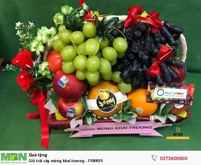 Mẫu 2019: Giỏ trái cây mừng khai trương - FSNK550