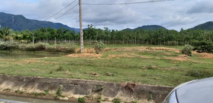 Bán Gấp 50Ha đất nông nghiệp Thôn Tân Phú , Xã Ninh Gia , Đức Trọng