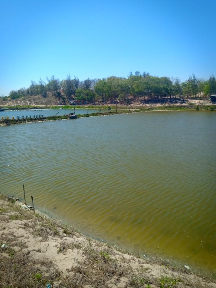 Bán gấp lô đất 10842m2 mặt tiền biển, Thị Xã La Gi, Bình Thuận, giá 10.842 tỷ