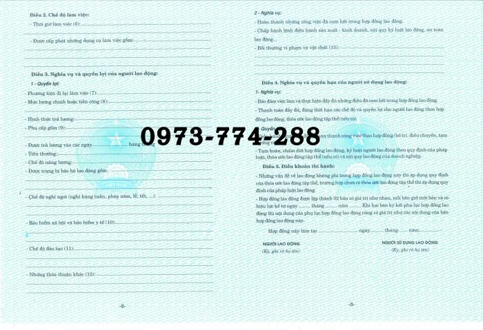 Bán mẫu hợp đồng lao động tiếng Việt1