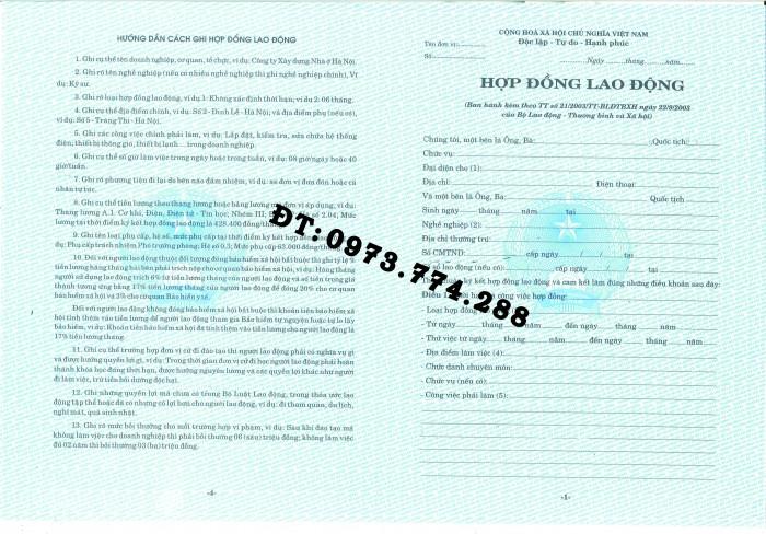 Hợp đồng lao động Tiếng Việt và Tiếng Anh  (Song ngữ)1