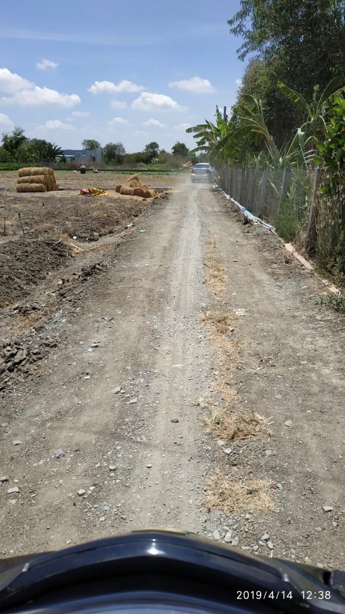 Đất bán tại đường Cộng đồng Lộc Trung - Mỹ Lộc - Cần Giuộc - Long An