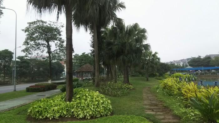 Bán đất đẹp Nguyễn Đức Thuận, 131m, kinh doanh tốt