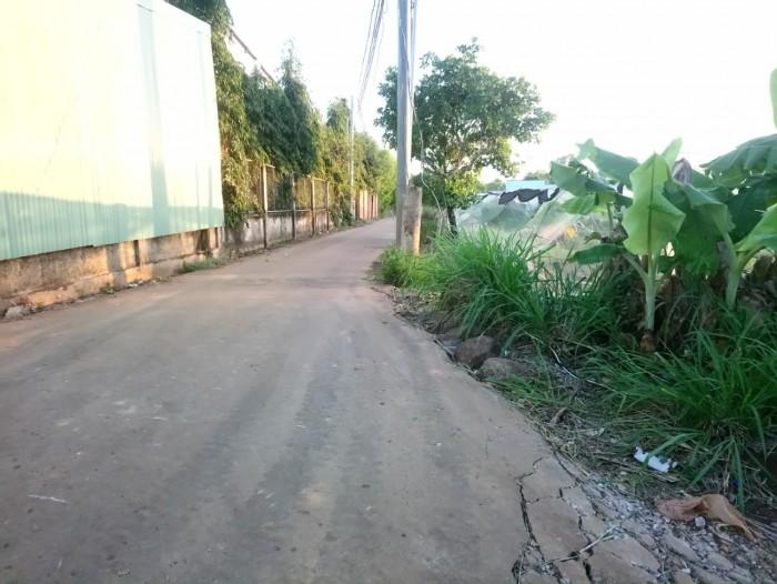 Cần bán 1.5 mẫu đất trồng bưởi Bàu Cạn, Long Thành.